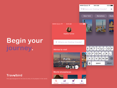 Travelbird. Application for traveling and finding new friends