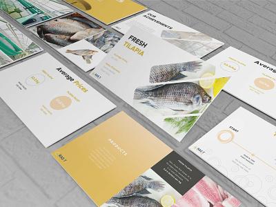 New Investment Feasibility Presentation sales presentation business presentation pitch deck powerpoint design presentation design