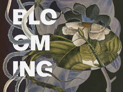 Graphic Concept for Blooming Festival 2020 identity design branding botanic floral illustration design graphicdesign