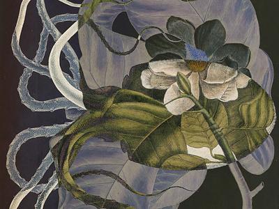 Blooming Festival 2020 botanical art collageart surealism botanic floral illustration graphicdesign design