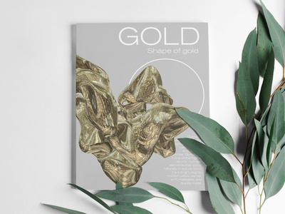 Shape of Gold book cover gold magazine book cover 3d art editorial design editorial art editorial graphicdesign design