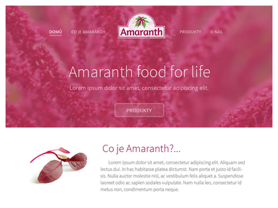 Amaranth - food for life