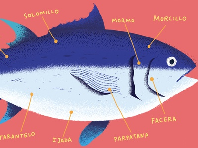 Tuna animal ocean fish tuna editorial illustration character editorial art photoshop illustration