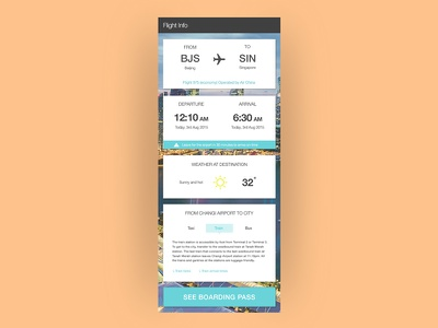 Flight / travel info app travelapp plane userinterface ux ui web mobile app flight travel