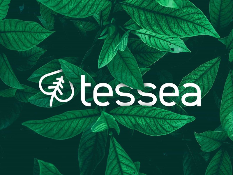 Logo Eco Consulting biodiversity climate environment sustainability ecology green logo