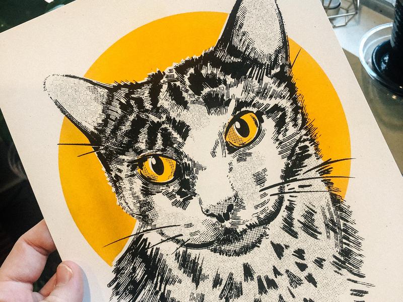 Suddenly In Riso ipad pro procreate drawing illustration printmaking riso risograph feline animal portrait cat