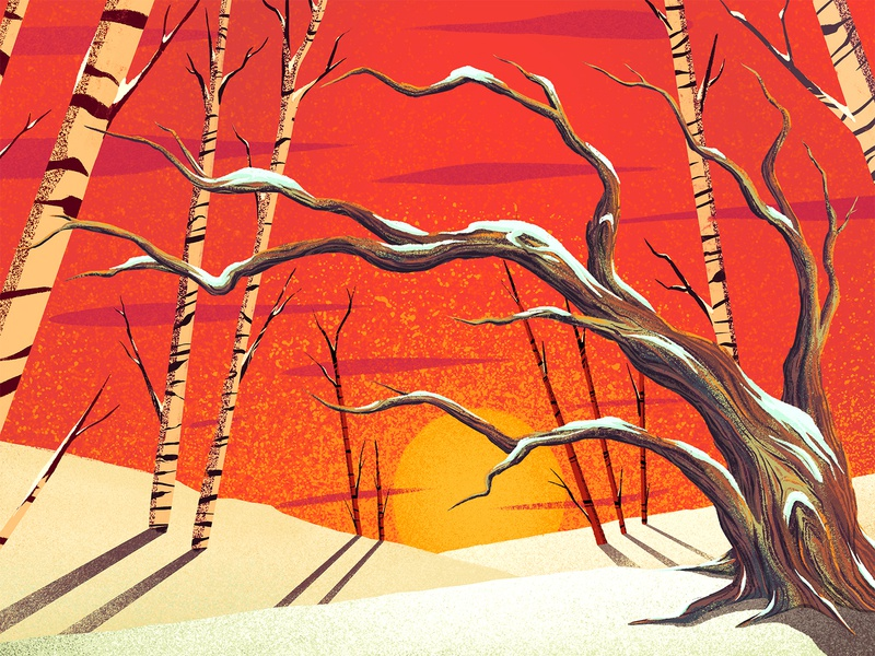 Birch Snowscape 2 birch seasonal snow landscape sunset trees aspen aspens 2d procreate ipad pro illustration digital painting