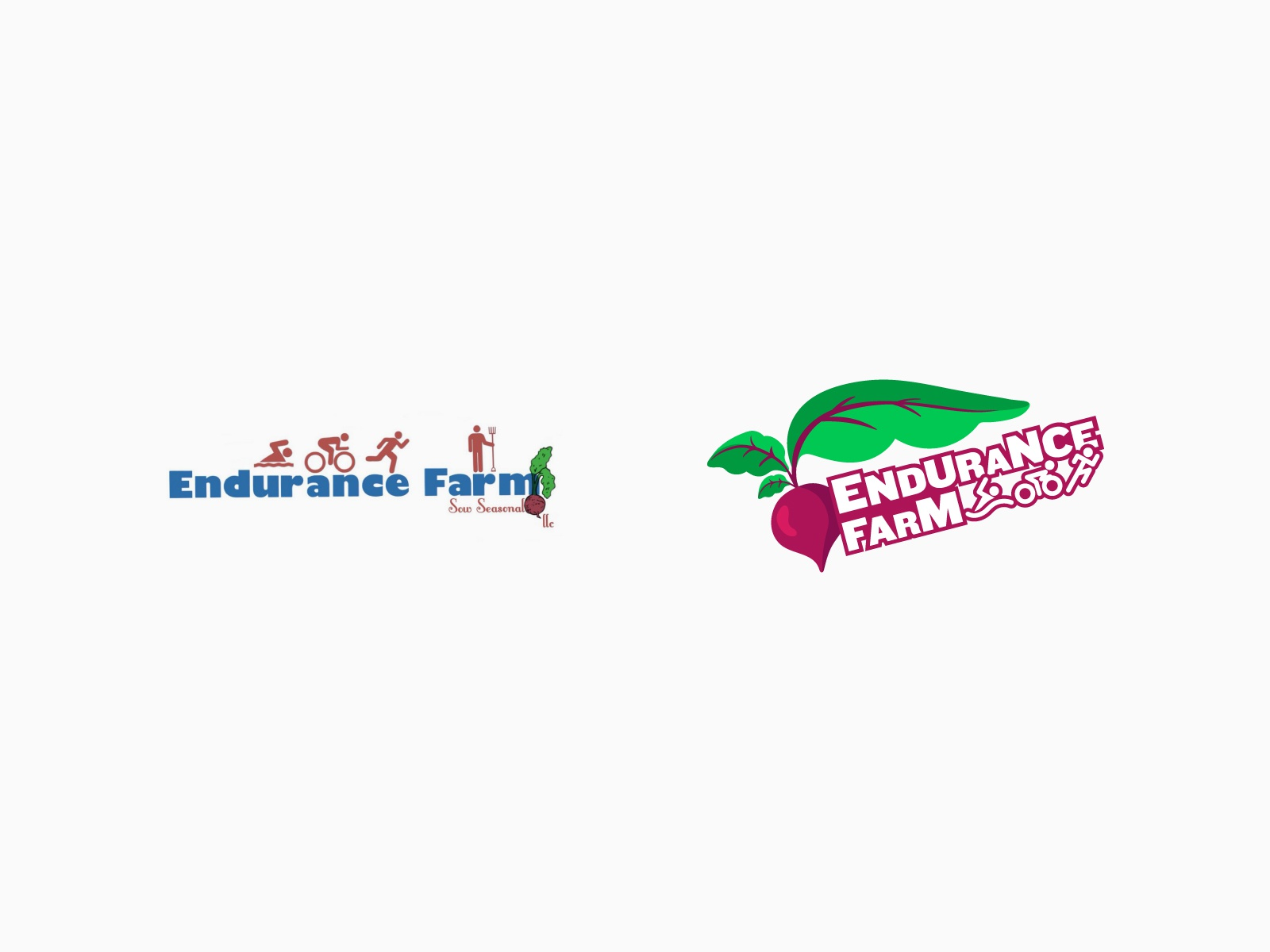 Dribbble endurance farm 03