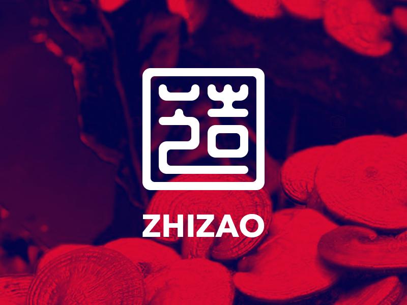 ZHIZAO seal chinese type branding logo