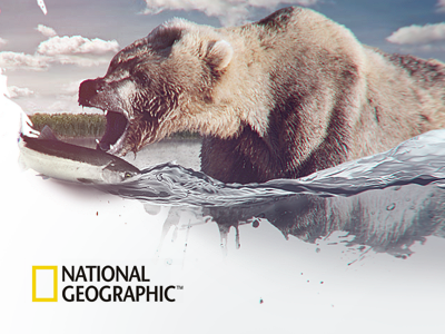 National Geopraphic geographic national natgeo evne splash water salmon bear