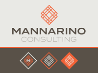 Mannarino Consulting Identity / Color Palette