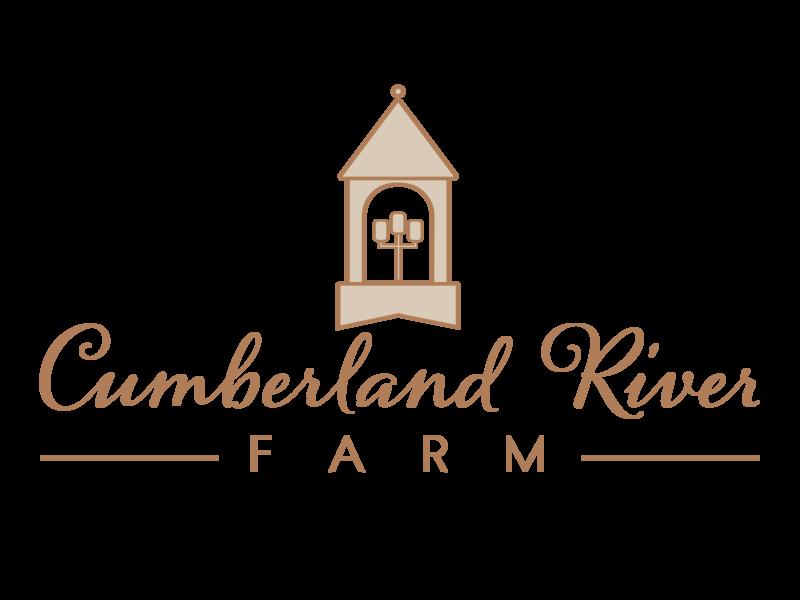 Cumberland River Farm Logo illustrator cc lamps lights brown farm logo