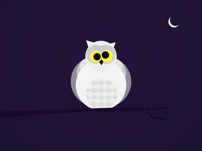 Always Up Late owl