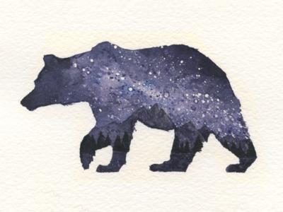 Starry Night - Bear