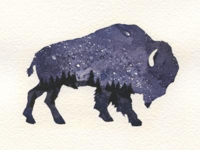 Starry Night - Buffalo