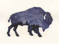 Starry Night - Buffalo