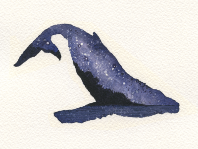 Starry Night - Whale