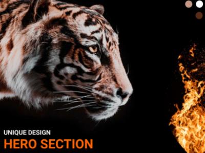 Hero Section - Focused Tiger! website design landing page hero section figma figmadesign