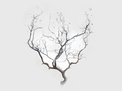 Omerata - Catharsis music design illustration art direction