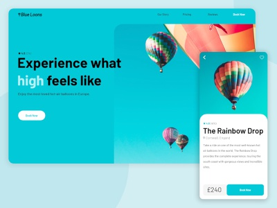 Blue Loons landing page product page travel balloons colorful color branding app web ui