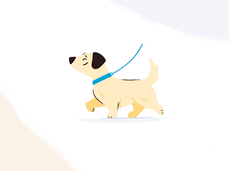 Dog Walking Landing Page Services branding dog illustration petshop pet animals homepage landingpage dog design web illustration