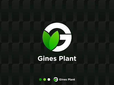 Gines plant modern logo logo design simple logo ecommerce app logo business letter modern g creative logo brand logo leaf healthy seed plant organic natural garden bio agriculture brand identity branding