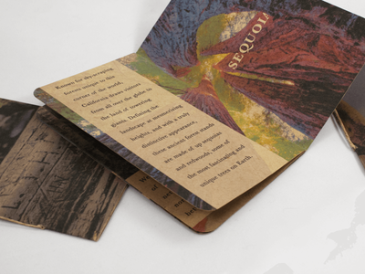 for people with pockets  |  national park pocketbook series binding photography typography design