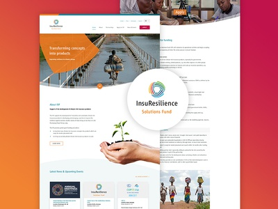 InsuResilience Solutions Fund whitespace typo photo clean design webdesign website