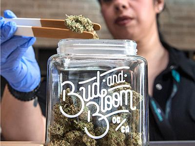 Bud and Bloom california weed marijuana logotype logo branding identity design typography lettering