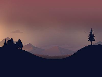 Different time scenery landscape website illustration sunrise light