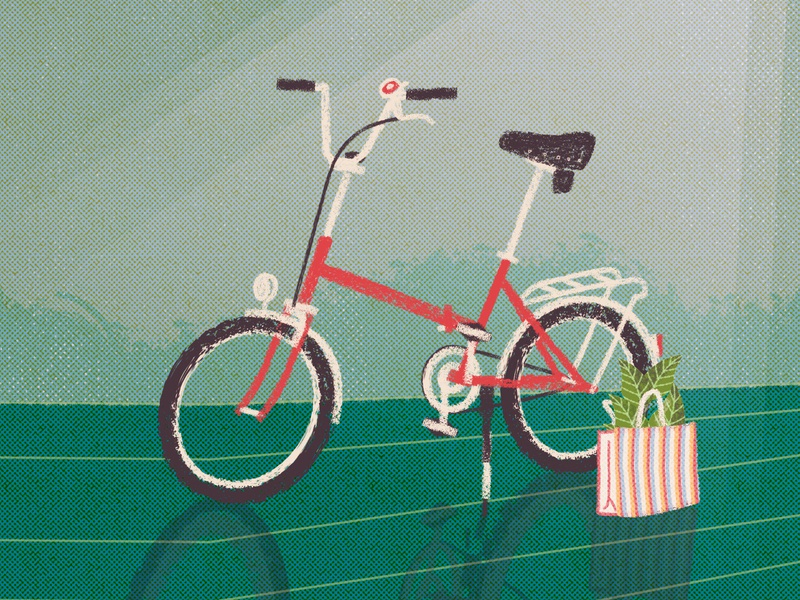 City bike csepel camping plants bicycle illustration