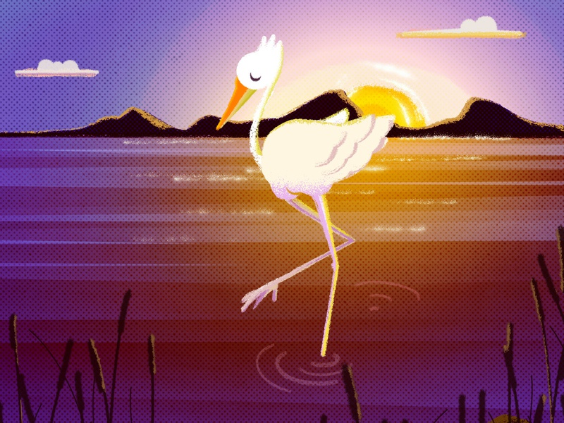The last sunbeam heron golden hour illustration