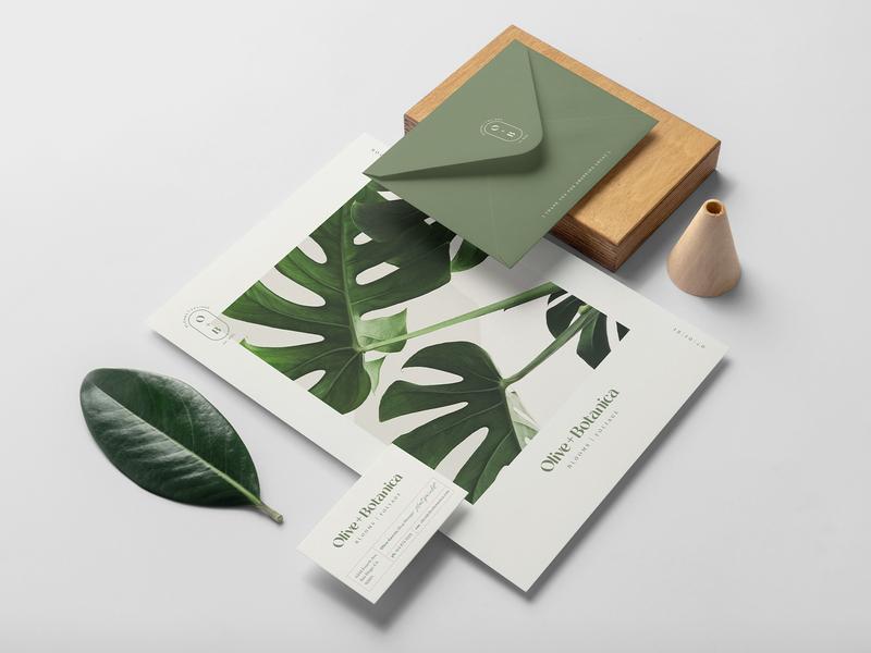 Olive+Botanica Stationery blooms foliage plant shop plant lady typogaphy brand design stationery set catalog design brandidentity brand branding plant businesscard catalog stationery