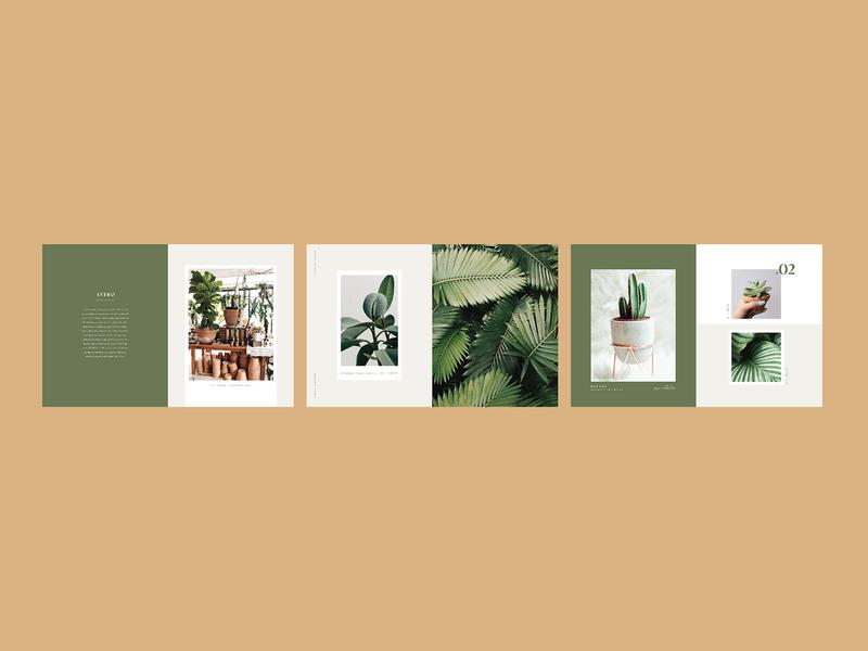Olive+Botanica Catalog design plant lady plant catalog plant editorial design editorial layout catalog design catalogue catalog