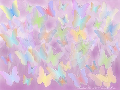 Papillon design graphic