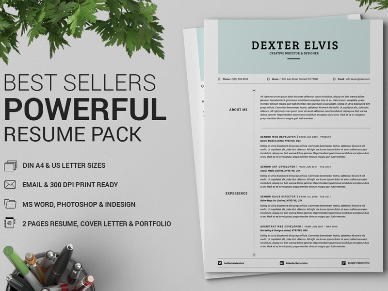 best sellers 2 pages powerful resume cv by daniel e graves