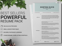 Best Sellers 2 Pages Powerful Resume CV