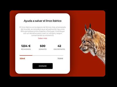 Daily UI 032 - Crowfunding Campaign donate web campaign crowdfunding campaign crowdfunding typography uxdesign userinterface uidesign minimal app design ux ui dailyui