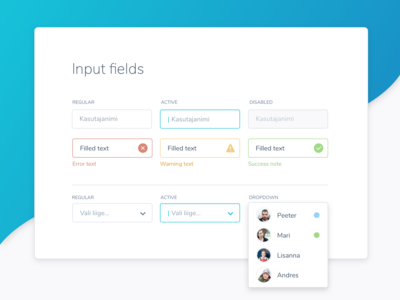 Few input field samples from the style guide