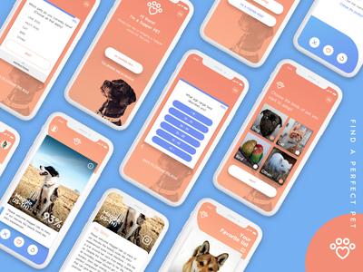App Concept - Find A Perfect Pet