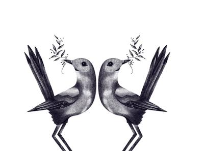 Birdies illustrationart ipadproart utrecht netherlands illustrator freelancers freelancer portfolio nature realistic digitalart procreateart illustrations drawing procreate ipadpro applepencil illustration