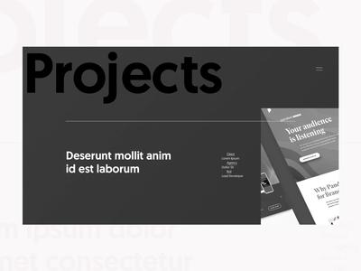 Portfolio Project Section