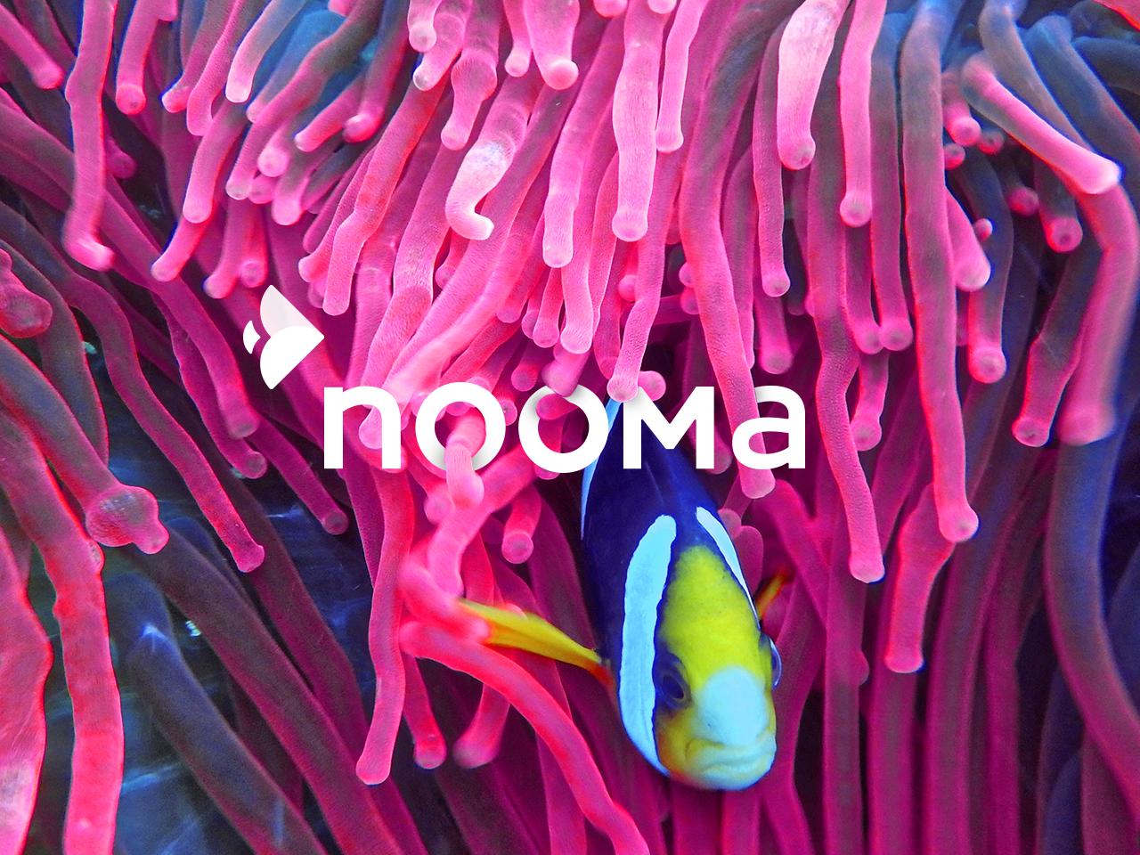 nooma ux ui typography logo branding