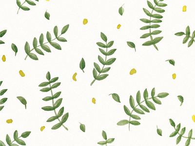Floral pattern. Yellow petals of acacia