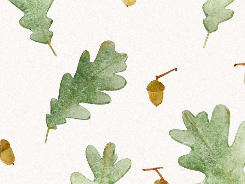 Floral pattern. Oak leaves with acorns  watercolor wallpaper spring pattern leaves illustration green floral fabrics botanical acorn oak