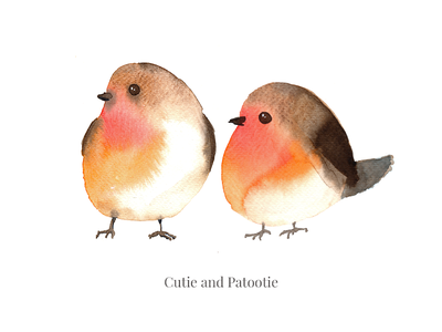 Tweet-tweet wild life stream painting live instagram chirrup species cutie birds illustration watecolor