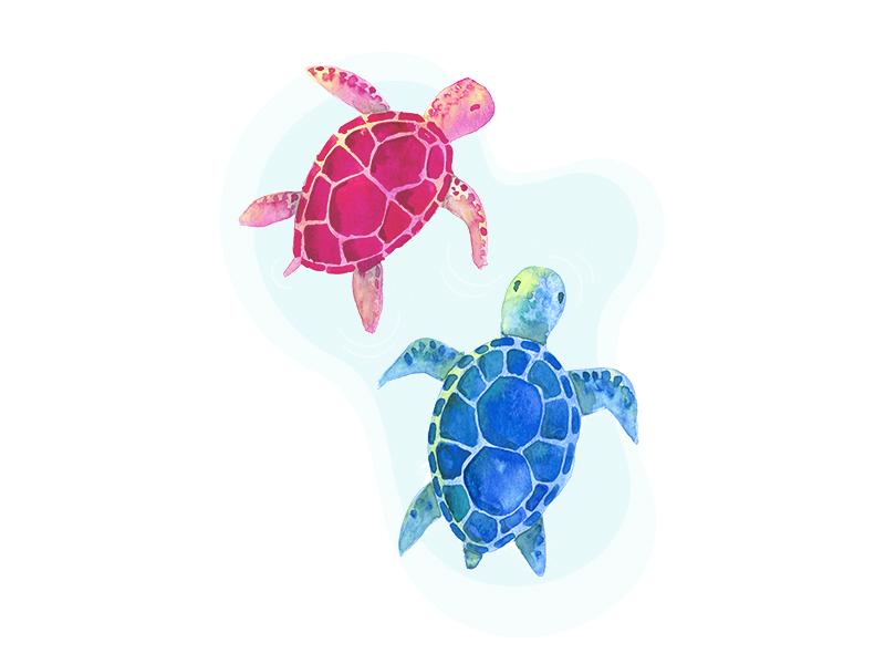 Turtles stream painting live instagram turtles illustration watecolor