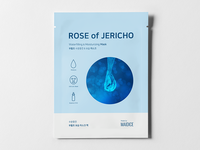ROSE OF JERICHO - Prototype 02