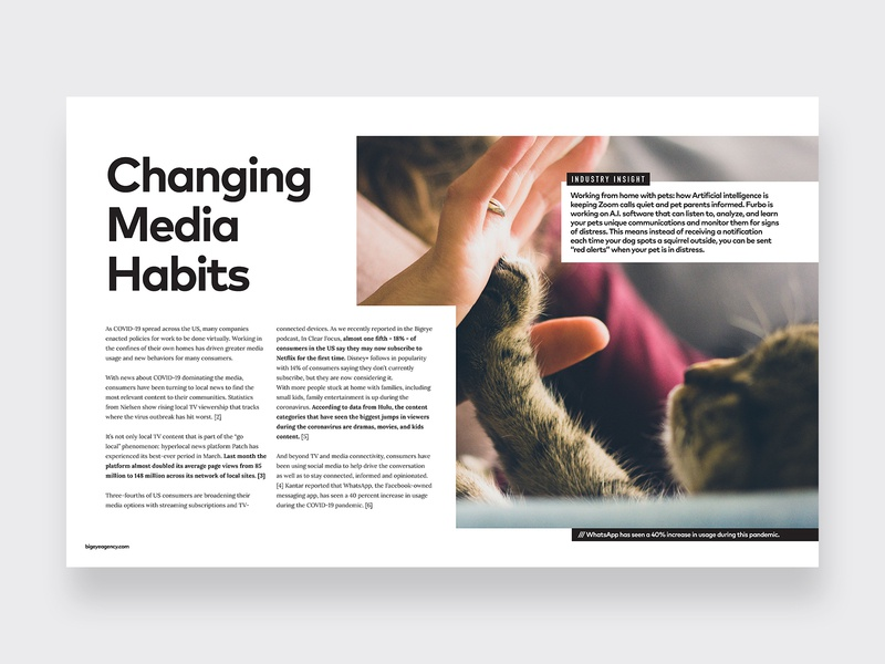 Layout Design for Insights Newsletter typogaphy agency grid layout exploration newsletter layout orlando branding design
