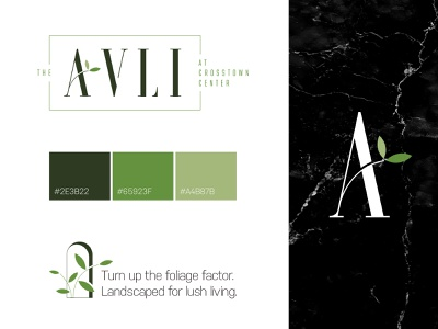 The Avli Branding ui visual identity campaign design icon marble orlando apartments brand identity brand design identity design idenitity branding design illustration